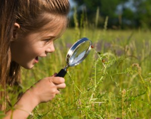 girl exploring the outdoors - great summer fun and learning opportunity